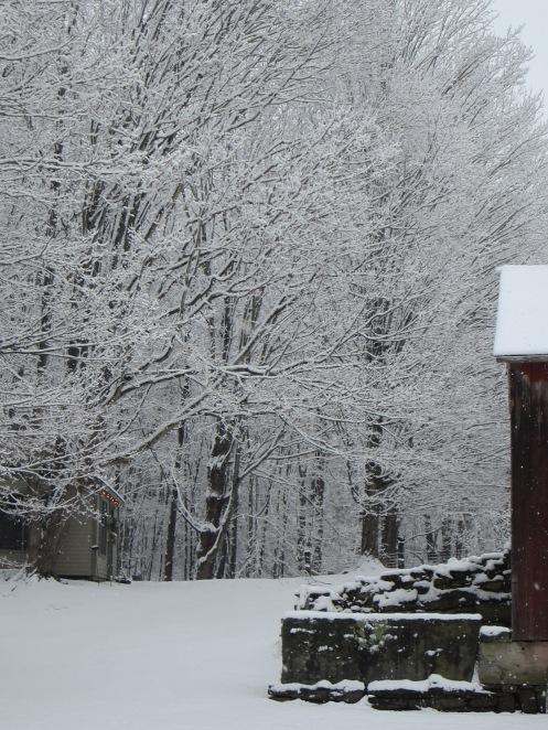 winter studio www.izannahwalker.com