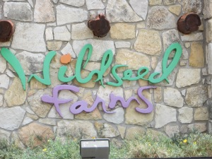 Our first stop after leaving the convention was Wildseed Farms to look at the gardens and buy wild flower seeds.  I've been buy from them for almost 30 years, so it was fun to see where all the seeds have been coming from.