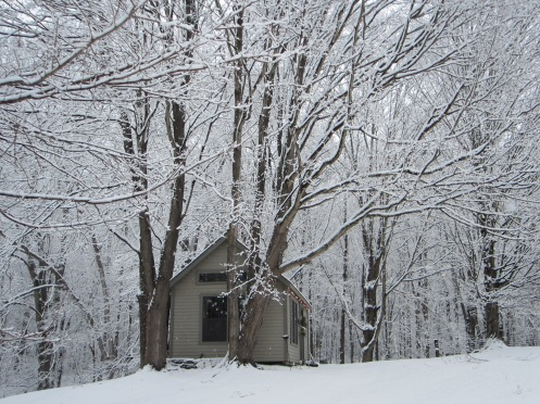 My current studio nestled in between the trees.