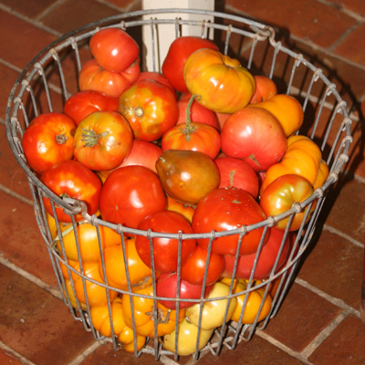 tomatoes-in-egg-basket