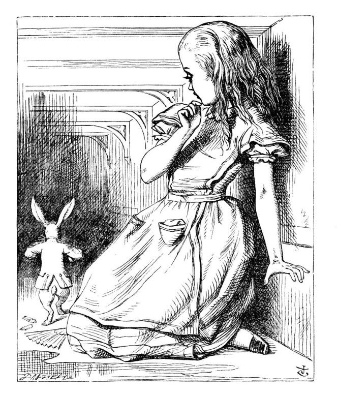 alice white rabbit