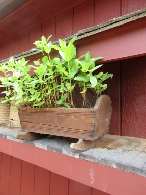 The doll's flower bed is actually a bed. It is an antique cradle with a zinc liner made for plants. <3